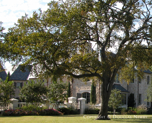 Residence in Preston Hollow - Gaywood Home in Mayflower Estates