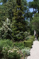Path Through Gardens at Crespi Hicks Estate to Guest House