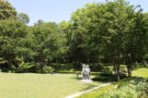 Overlooking Grass Terrace into Forest of Crespi Hicks Property in Preston Hollow