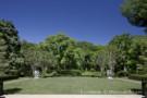 Estate Property Landscape