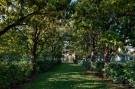 Tree Path Outside Preston Hollow Estate Home