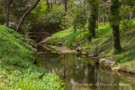 Creek Running by Mayflower Estates Home