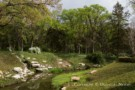 Creek and Forest on Preston Hollow Estate Property