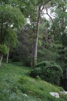 Wilderness Surrounding Preston Hollow Estate Home