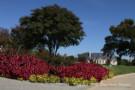 24 Braewood Place in Glen Abbey Gated Neighborhood