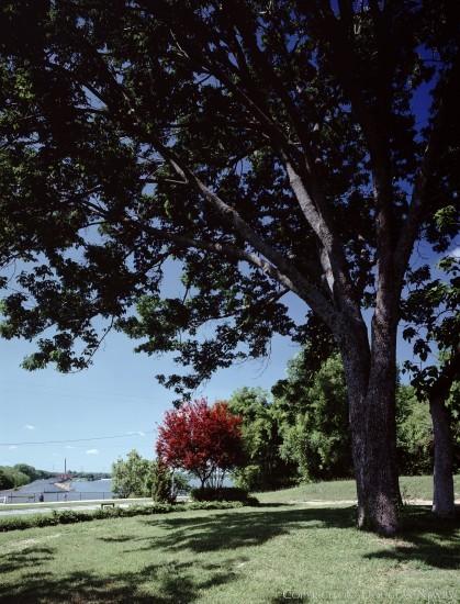 Lot in White Rock Lake - 8100 Garland Road